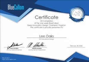 BlueCallom Experience 2021 - Certificate