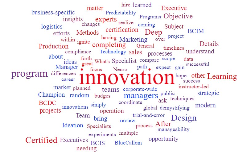 Certified Innovation Manager Orientation BlueCallom Academy Wordcloud